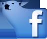 FB Polaris